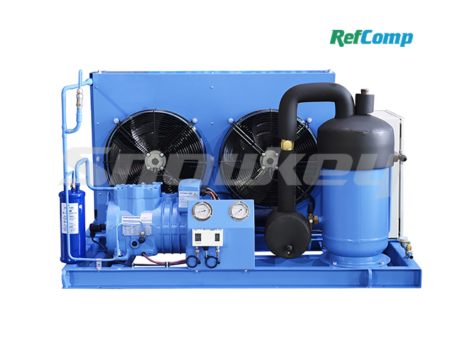 Air-Cooled Piston Compressor Condensing Unit AP2H005