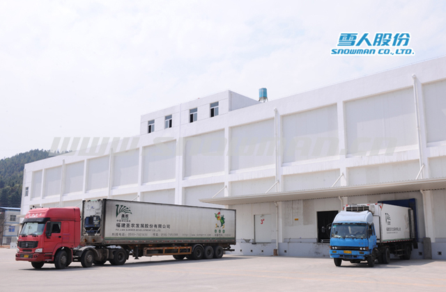 Large Meat Processing Engineering